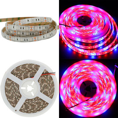 SMD 5050 LED Strip Grow Light Lamp Full Spectrum 3 Red 1 Blue Waterproof IP65