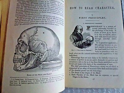mEDICAL ANTIQUE HAND BOOK PHYSIOLOGY PHRENOLOGY PHYSIOGNOMY HOW 2 READ CHARACTER