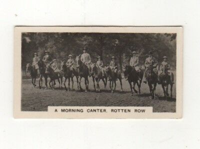 Hores ride in Rotten Row Hyde Park cigarette card