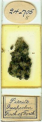 Pikrite from Inchcolm Microscope Slide for Polariscope