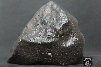 NWA Unclassified Meteorite Individual 785g with beautiful flight marked surfaces