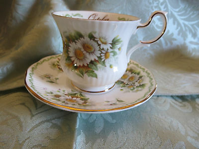 Rosina Queens Fine Bone China Cup & Saucer Special Flowers Daisy October
