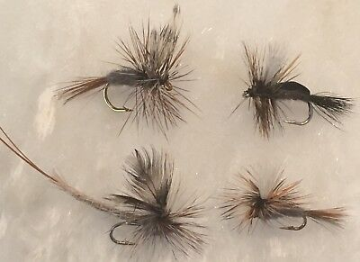 Adams Family Collective Mixed Dozen Of Adams Style Fly Fishing Dry Flies
