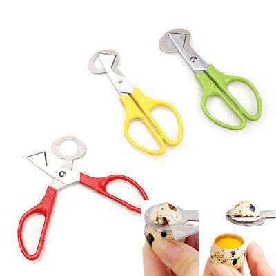 1Pcs Quail Egg Scissors Cracker Opener Cigar Cutters Stainless Steel Blade Tool