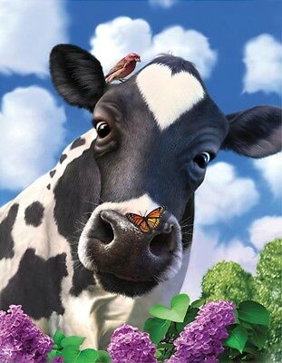 3D Picture Farm Animal Curious Cow with butterflies & bird 39 x 29 cm approx NEW
