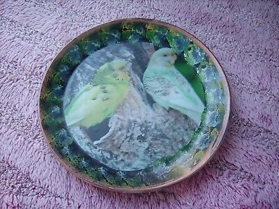 Budgerigars       On A Decoupage  Plate