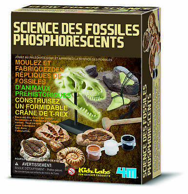 Kit DAM/4M pour enfant Science des fossiles phosphorescents - 4M