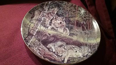 Bradford exchange wolf plate hint of spring .spirits of the season
