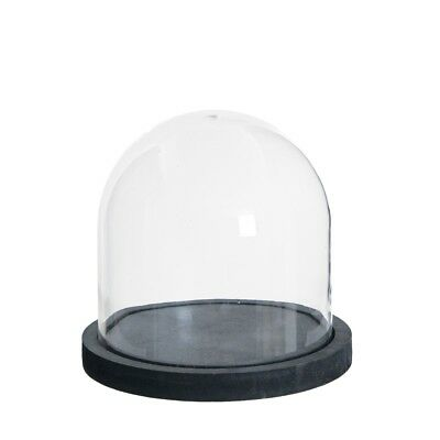 Small Wide Glass Display Cover Dome Cloche With Black Base 28 cm by TOBS