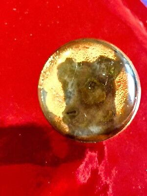 RARE Antique Horse Bridle Rosette Litho C/O of a Adorable Jack Russell