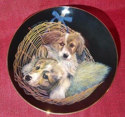 """Collie Puppies """"Double Delight"""" Collector Plate** SALE** $ LOWERED**"""