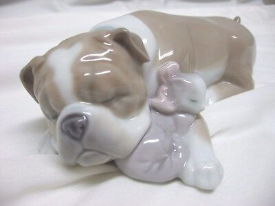 Lladro Figurine #6417 Unlikely Friends, Dog & Cat Napping Together~Box & Papers
