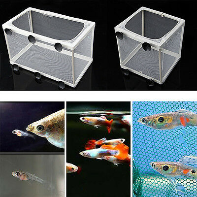 S/L Aquarium Fish Tank Guppy Breeding Breeder Fish Baby Gauze Trap Box Isolator