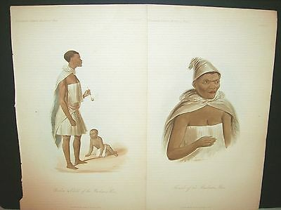 African / Native / 1855 Bushman Race ~The Natural History of Man / Prichard