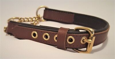 Tan on Brown leather Martingale dog collar with Solid brass hardware and chain