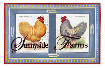 Sunny side Farm Rooster Canvas Print Rustic Primitive Country Blue
