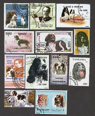 ENGLISH SPRINGER SPANIEL ** Int'l Dog Postage Stamp Collection ** Unique Gift*