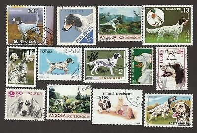 ENGLISH SETTER * Int'l Dog Postage Stamp Collection *Unique Gift*