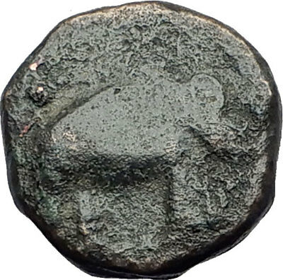 ANTIOCHOS III Megas the Great 202BC Seleukid Ancient Greek Coin ELEPHANT i64243