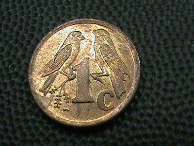 SOUTH  AFRICA    1  Cent    1996    SPARROWS