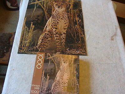 SPRINGBOK Puzzle-- phantom of the forest--- Cheetah