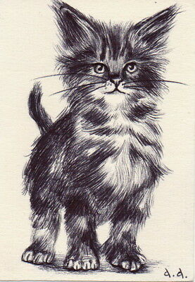 Original ACEO drawing Little Kitten Cat sketch animals wildlife By A.A