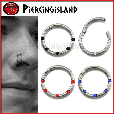 Titanium Crystal Nose Lip Ear Septum Segment Clicker Ring Hoop Earrings Sleeper