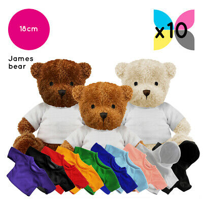 10 Blank James Teddy Bears Plain White T-Shirt Soft Toys for Sublimation Bulk