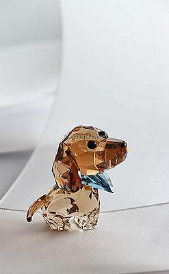 Swarovski Crystal Lovlot Puppies Milo Dachshund 5063336 Mint Boxed Retired Rare