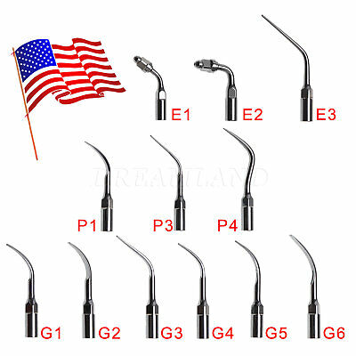 USA Dental Ultrasonic Scaler Scaling Endo Perio Tips Fit EMS Woodpecker 12 type