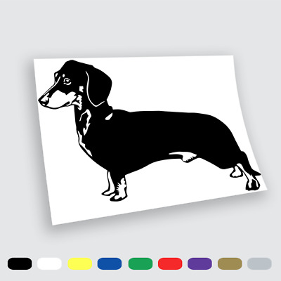 Adesivi in vinile Wall Stickers Prespaziati Tao cane uomo love Auto Notebook