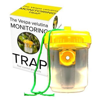 Asian Hornet trap Vespa velutina Trap TESTED, Pest Control, Beekeeping