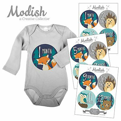 12 Monthly Baby Stickers, Woodland Baby Month Stickers, Fox, Bear, Hedgehog, Boy