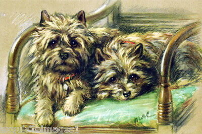 Vintage Art~ Cairn Terrier Puppy Dog Dogs in Chair~ NEW Large Note Cards