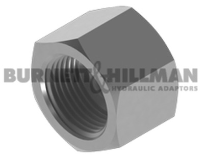 Burnett & Hillman NPTF Fixed Female Cap Hydraulic Fitting