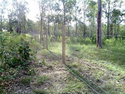 HDG Cattle Fence Farm 8/120/15 Hinge Joint Fence  1.2mx100m