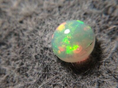 Welo Opale- 0.80 cts - Taille cabochon rond