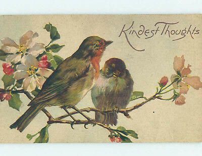 Pre-Linen PAIR OF LARGE BEAUTIFUL BIRDS SITTING ON FLOWER BRANCH HJ4433