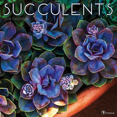 2018 Succulents Wall Calendar
