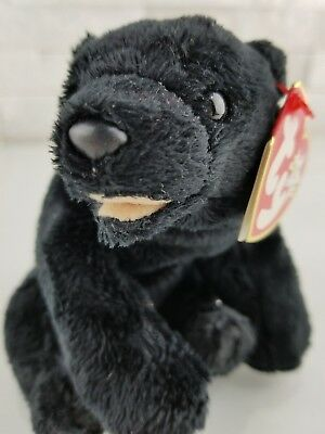 Ty Beanie Baby CINDERS Plush Black Bear with Tan Mouth 2000 Star on Swing Tag
