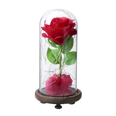 Red Silk Rose Led Light w/ Fallen Petals Glass Dome for Gift Home Wedding Decor
