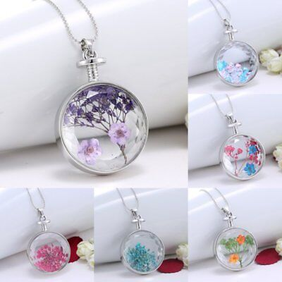Round Glass Real Dried Flower Pendant Necklace Silver Long Sweater Chain Jewelry
