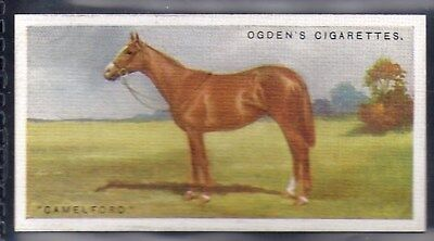 Ogdens-Derby Entrants 1928-#06- Horse Racing - Camelford