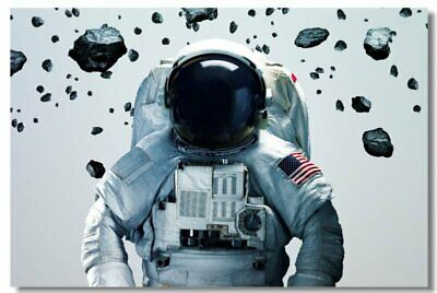 Poster Astronaut on the Moon Earth Planet A Men Drink Beer USA Flag Print 05