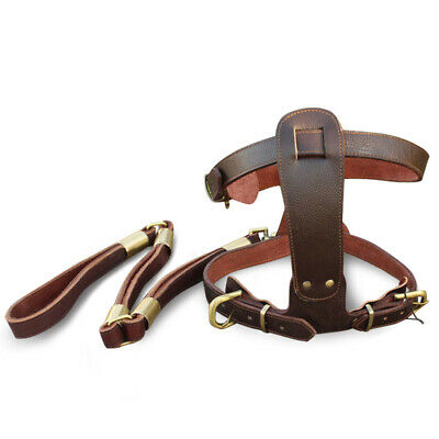 New Genuine Real Ox Leather Large Breed Dog Pet Collar Leash Set Harness Set
