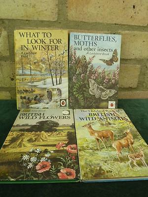 4 Vintage Ladybird book from series 536 what to look for winter , Butterflies
