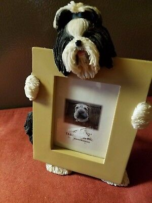 New! Shih Tzu, Black & White Picture Frame.1 left. 6 to 7 tall by 4-5 wide