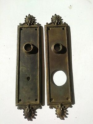 large heavy brass antique door back plates