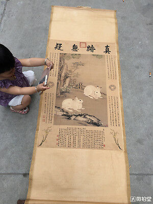 Collection Rare antique chinese painting scroll rabbit --LengMei