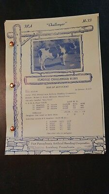 1957 Pa Artificial Breeders Cooperative Holstein Sire Directory Pedigree Book